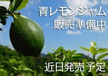 レッカーバロンの国産 [尾道しまなみ]瀬戸内青レモンジャム