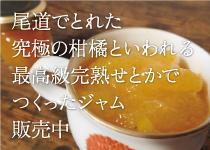 瀬戸内尾道で取れた究極の柑橘と言われる最高級せとかでつくったジャム販売中