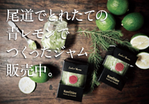 レッカーバロンの尾道産青レモンジャム 好評発売中