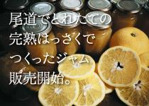瀬戸内尾道でとれたはっさくでつくったレッカーバロン特製 旬のはっさくと完熟レモンのジャム 販売開始(瀬戸内ブランド登録商品)