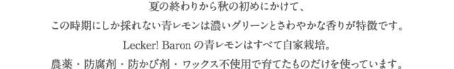 LB_sozai_aolemon01-2.png