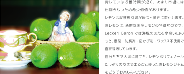 LB_sozai_aolemon01-3.png