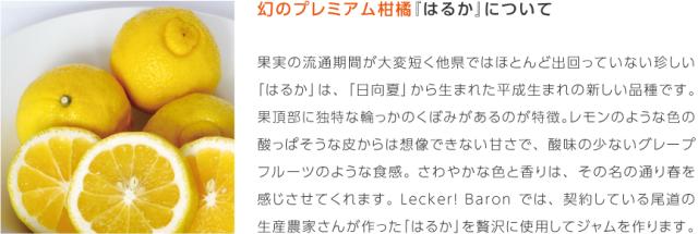 LB_sozai_haruka01.png