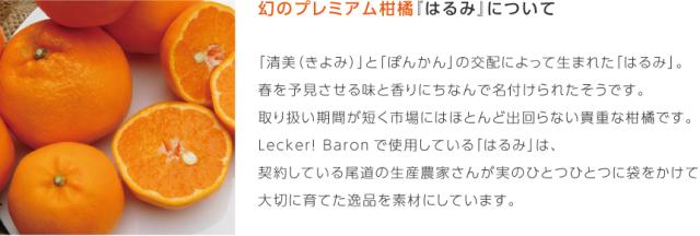 LB_sozai_kankitu01-harumi.png