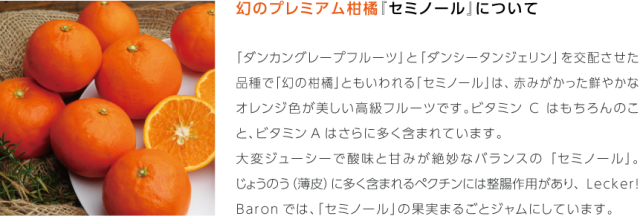LB_sozai_kankitu01-seminoru.png