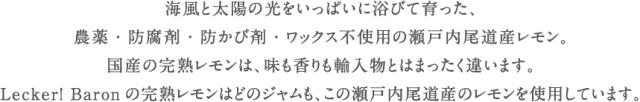 LB_sozai_lemon01-2.png